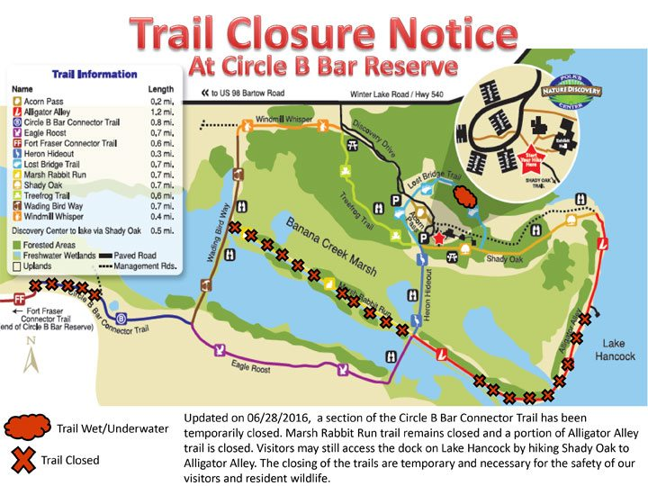 Much of Circle B's Alligator Alley Closed for Three Months ...